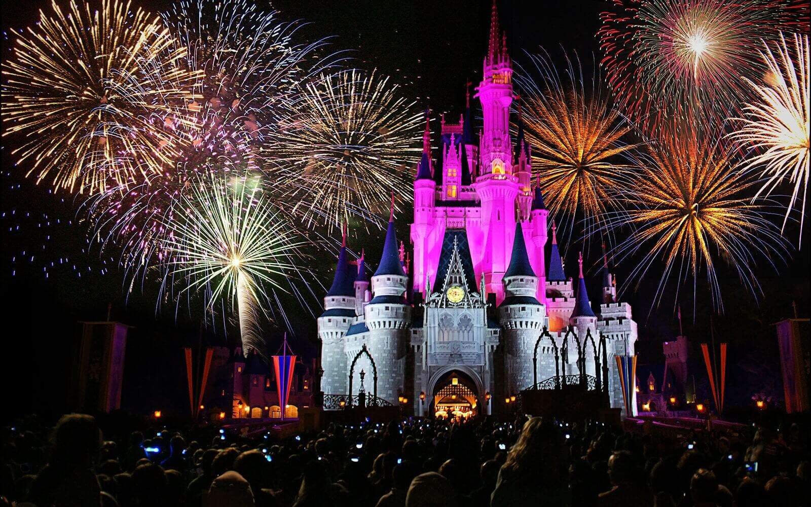 customer experience walt disney magic kingdom fireworks atendimento